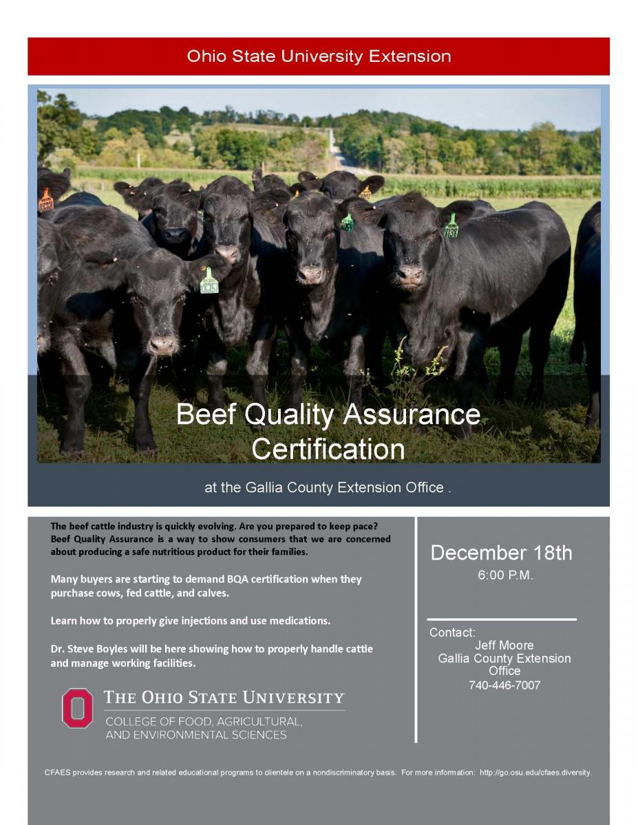Beef Quality Assurance Certification Gallia