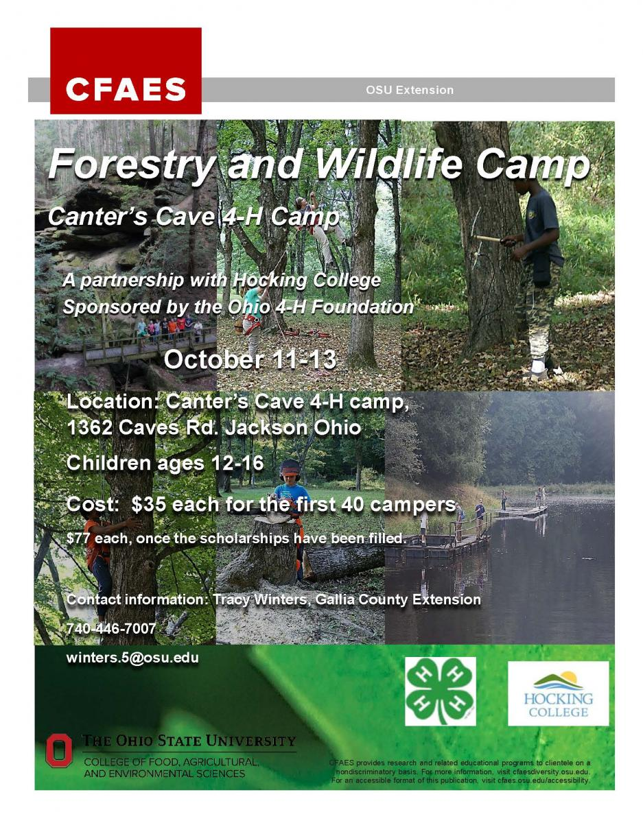 2019 Forestry Camp